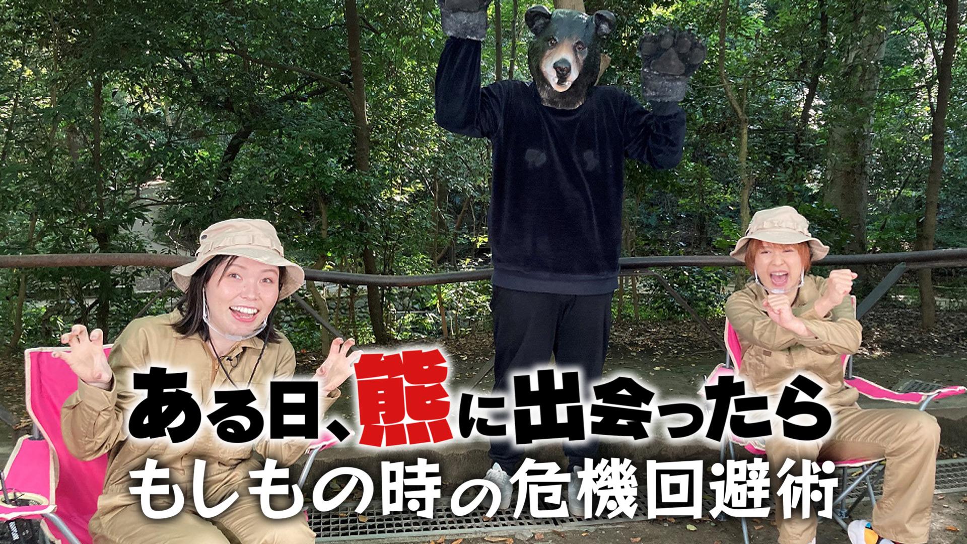 無料テレビである日、熊に出会ったら~もしもの時の危機回避術~を視聴する