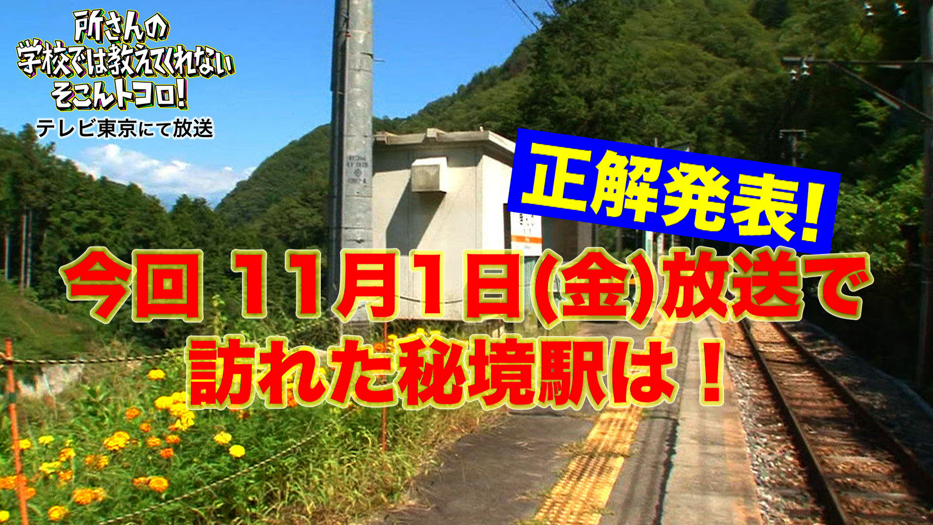【11月1日(金)放送の正解を発表!!】「所さんのそこんトコロ!」で訪れた秘境駅はどこ?
